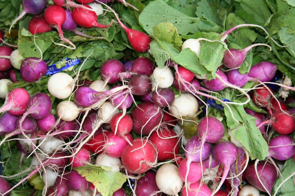 It's time to find an organic Spring/Summer CSA, Community Supported Agriculture (4/6)