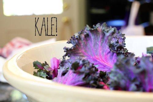kale caesar with toasted panko and olive oil tuna - kale leaves