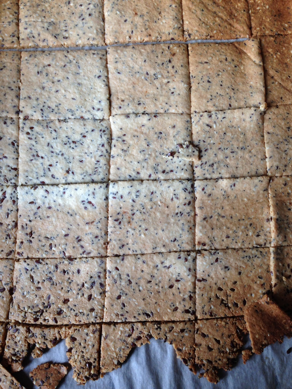 Grain Free, almond, Flax, Chia. Seed crackers
