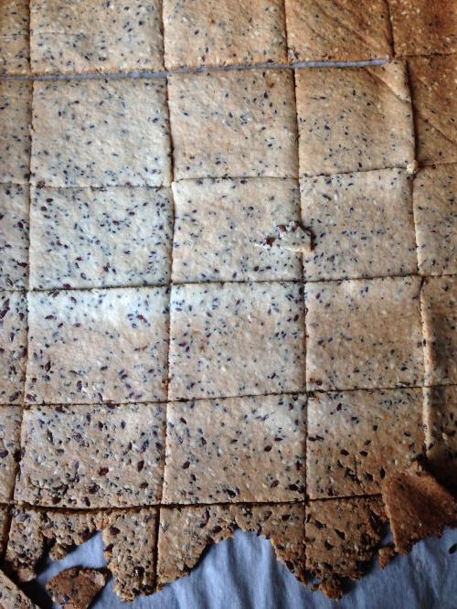 Grain Free, almond, Flax, Chia. Seed crackers